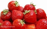 apple fruit variety - 1 Professional Pack Seeds Pack Super Giant Strawberry Fruit Seed Apple Sized True Variety NOT fake NF349