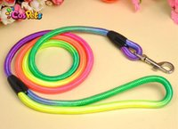 Wholesale 1PCS Rainbow Nylon Dog Circular Harness Lead Collar for small dogs quot Lengthgs hot fashion sale