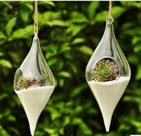 vases - hanging glass succulent vase creative home decoration Succulent Terrarium Kit Housewarming Wedding Gift