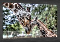 art care frames - HD Canvas Print home decor wall art painting No Framed giraffe caring young x36inch
