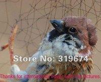 agricultural bird netting - x Meter Agricultural Anti Bird Mesh Net