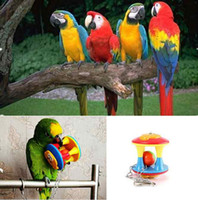 Wholesale Parrot Chew Ball Durable Pet Bird Bites Toy Swing Cage Hanging For Parakeet