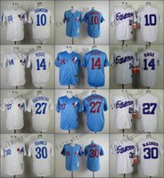 pinstripe baseball jerseys - Pinstripe Vladimir Guerrero Tim Raines Andre Dawson Baseball Jersey Rugby Jerseys Embroidery logos Authentic Size M XXXL