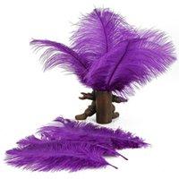 Wholesale IMC Home Decor Purple Ostrich Feathers Purple order lt no track
