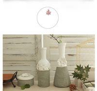 flower vases - manufacture outlet homeware freshness flower vase flower pot household mini vase two color manufacture outlet