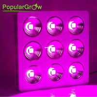 Wholesale PopularGrow COB W Led Grow Light Lamp X3W Chip For commercialized growing
