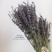 authentic production - In Package mail Authentic French lavender blue production in xinjiang dried bouquets Gift flower branches