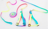 Wholesale High quality Colorful adjustable Dog Harnesses Leashes Rainbow Colors Small pet Dog and Cat Pet Collar Traction Rope Leash Pet Supplies