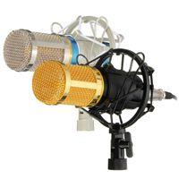 Wholesale Professional Condenser Microphone Mic Studio Sound Recording Dynamic Record BM800 Two Colors