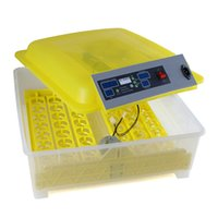 Wholesale Brand New Automatic Eggs Digital Clear Egg Incubator Hatcher Turning Temperature Control A14 A