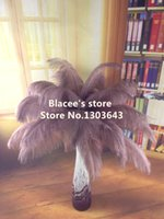 Wholesale NEW prices brown ostrich feather for wedding decor or table decor