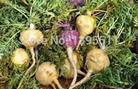 Cheap 100 MACA BLACK Peruvian Ginseng seeds - Lepidium meyenii rare herb and vegetable seeds good for health and kidney