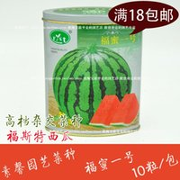 Wholesale One blessing honey canned watermelon seeds watermelon seeds of hybrid field with the farmer vegetables watermelon seed unicorn