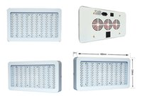 Wholesale Hottest Led grow light w with single lamps inside w led plant grow light popular in USA CA UK Au
