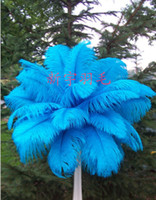 Wholesale DIY Ostrich Feathers Plume custom colour for Dress Decorations party decoration