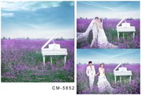 alfalfa flowers - 200cm cm ft ft wedding background Piano alfalfa flowers blue sky photo background photography backdrops cm