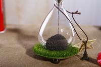 Wholesale Tieshukaihua Queen Decoration fashion glass hourglass sand timer HB102