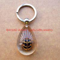 amber keyring - Real Beetle Bug Keychains Drop Shape M Size Insect Amber Resin Keychain Bug Keyring