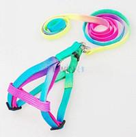 Wholesale Pet Nylon Rope Lead Adjustable Dog Harness Leash Collar Set Colorful