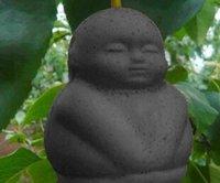 Cheap 2pcs a set black color baby ginseng tree Seed 100% real