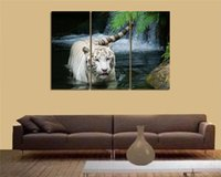 animal pictures wallpaper - HD Canvas Print home decor wall art painting Picture no frame white tiger animal wallpaper