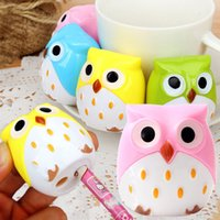 Wholesale Cute Owl Bird Pencil Sharpener Stationary School Kid Children Mini Design New