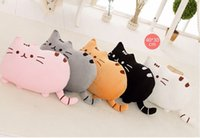 Wholesale Five Colors Cartoon Pusheen Cats Plush Toys Brinquedos Factory Price Drop shipping
