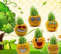 Wholesale 500PCS LJJHH751 QQ Emoji expression mini plants magic grass planting bonsai green plants potted gift Flower Seeds