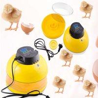 Skateboard auto incubator - Incubator Mini Egg Bird Incubators Auto Automatic Chicken Poultry Newest style shipping from AU OVS GDJ AU