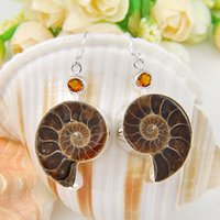 ammonite earrings - 5 Pairs Holiday Gift Unique Fire Real Ammonite Fossil Sterling Silver Drop Earrings Russia American Australia Wedding Party V Earrings