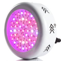 Wholesale New Cheap Factory Price High Quality Led Grow Light W Black Body Shell For Indoor Growing Plants Bloom Flower Led Grow Lights DHL