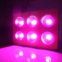 Wholesale 600w Growing panel led grow light w led grow light greenhouse hydroponic lamp for Growing vegetative