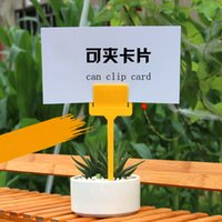 Wholesale Waterproof Strip Line Gardening Labels Signs Plant Hanging Tags can clip cards jt018