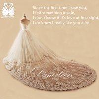 Wholesale Daneileen Freeshipping WR8987 Soft White Real Latest Princess Sweetheart Tulle Detachable Royal Train Bridal Wedding Dress