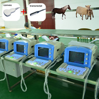Wholesale Any two probes animal Portable Ultrasonic Diagnostic Devices cheap veterinary Ultrasound scanner machine price vet ultrasound veterinario