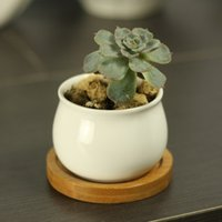 Wholesale Modern Style Decorative White Round Ceramic Crafts Succulent Planter Flower Mini Pot with Bamboo Tray EB DJ15604