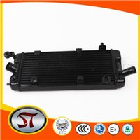 Wholesale Radiator Grille Guard for STEED order lt no track