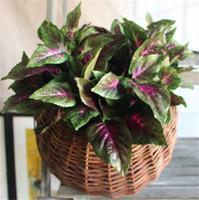 basil plants flowering - Silk Basil Leaf Plant cm quot Length Artifical Flowers Plants Perilla Purple Color for Wedding Centerpiece Home Showcase Party Decor