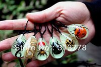 amber insect - Unique Luminous Insect Amber Necklace Novel Pendant Jewelry Festival Gifts pairs Mixed