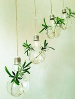 Wholesale New Arrive Light bulb shape glass hanging terrarium vases air plant succulent terrarium for home decoration