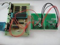 Wholesale New V HC595 Digit Orange LED Display Module Segment Digital display For Arduino MCU