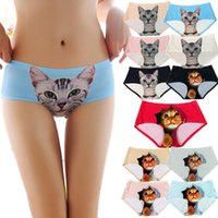 Wholesale Newest Ladies Underwear Cute D Cat Panties Sexy Mid Waist Underwear Comfort Briefs Animal Panties For Women Nylon Panties Gifts