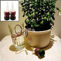 Wholesale 2014 New Indoor Automatic Watering System For Plant Waterer Houseplant Water Spikes