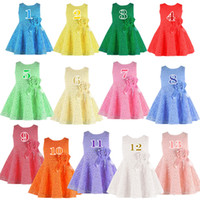 Wholesale 13 Colors Summer Girls Lace Flower Dresses Kids Sleeveless Princess Tutu Dress Korea Fashion Cheap Party Dress childrens dancewear