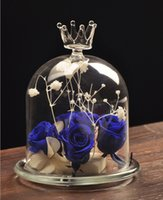 Wholesale 2016 Hnadmade Decorative Clear Crown Glass Cloche Display Vase Hydroponic Plant DIY Terrariums Home Office Desk Decor Decoration Gift E446J
