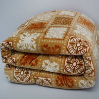 Wholesale Clearance winter export of the original single sheets with coral velvet quilt upgrade flannel winter quilt