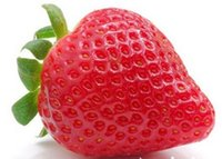 Cheap Fruit seeds strawberry seeds DIY Garden fruit seeds potted plants