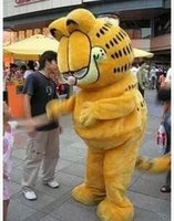 Wholesale Plush Garfield Adult size Mascot costume Cartoon character costumes