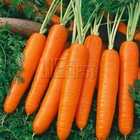 Cheap 100Carrot Scarlet Seeds Anti-aging ginseng nourishing Bonsai plants Seeds for home & garden spring garden fun for kids non GMO Fast Sprout