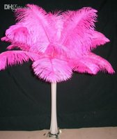Wholesale cm Ostrich Feather pieces any color is available stage accessories wedding decoration